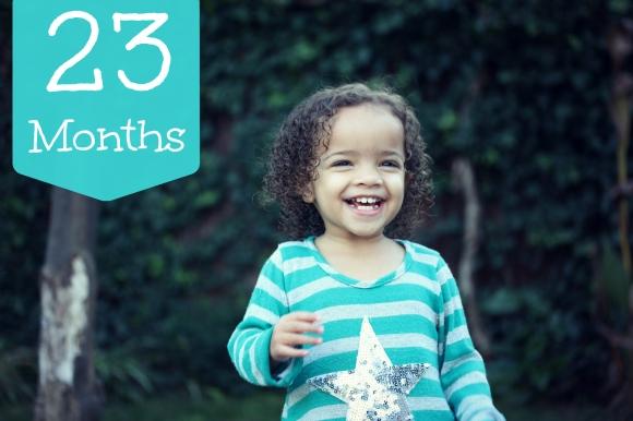 23 months