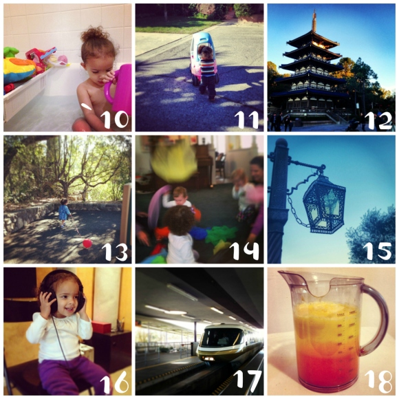 Photo A Day Challenge 10-18