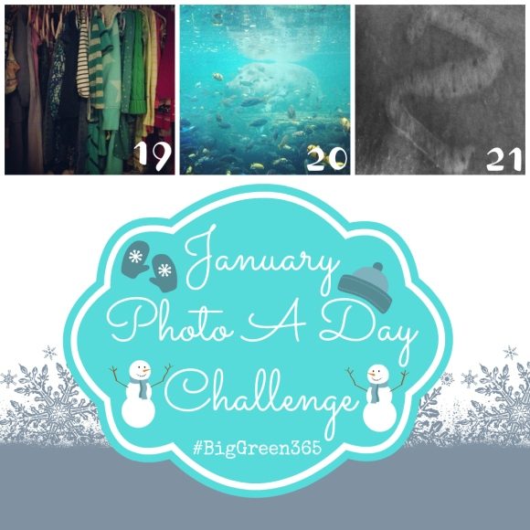 Photo A Day Challenge 19-21
